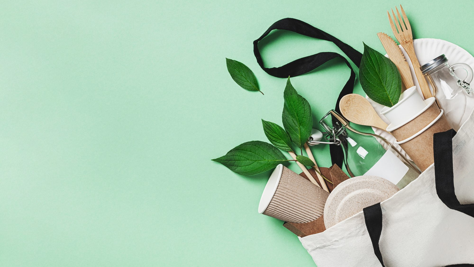 Sustainable Habits That Aren't Always as Sustainable as You Think: tote bag with plants, coffee cups, and groceries
