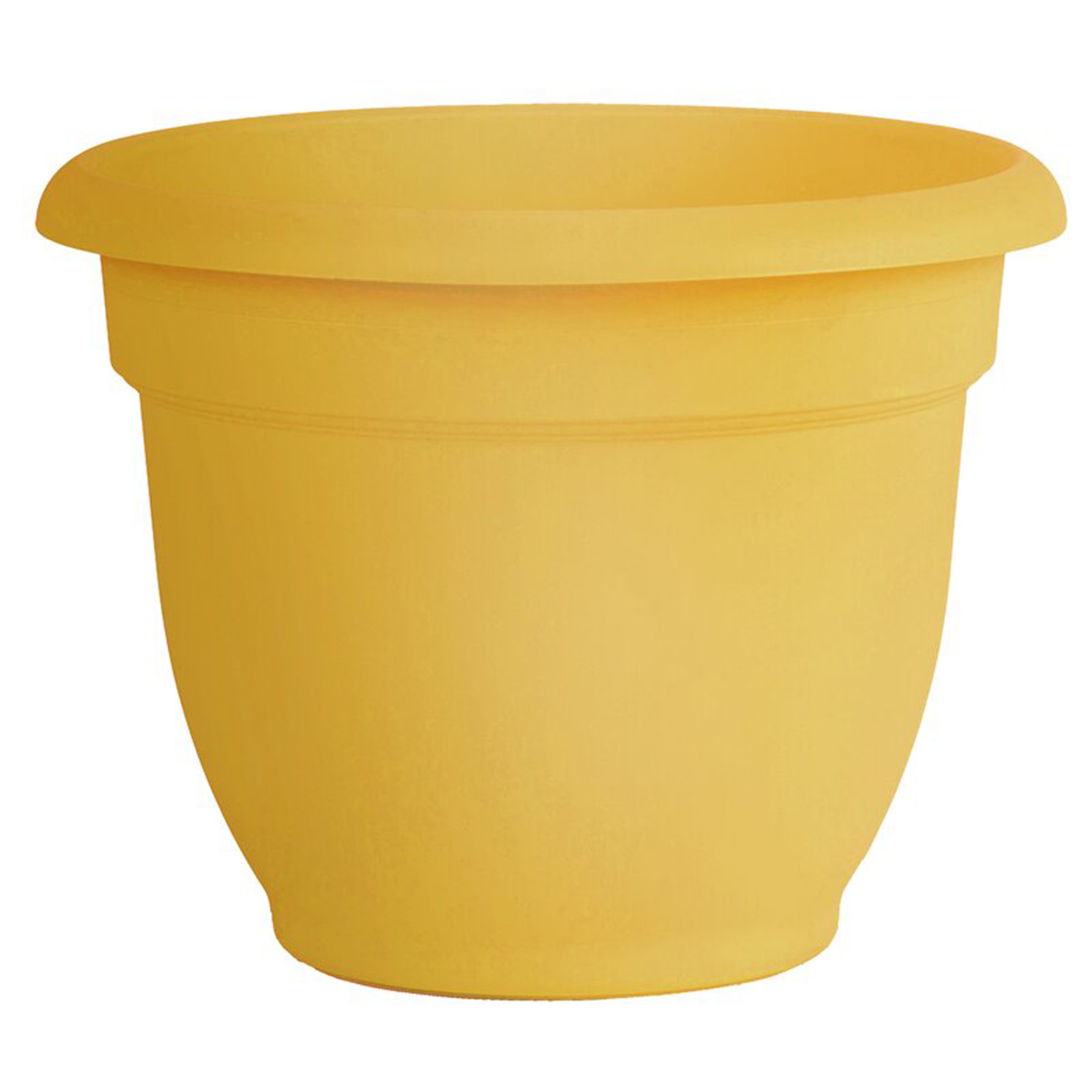 Cordeiro Self-Watering Polypropylene Pot Planter