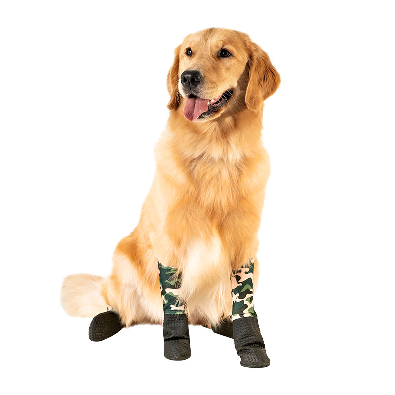 6 Clever Items: Dog Leggings