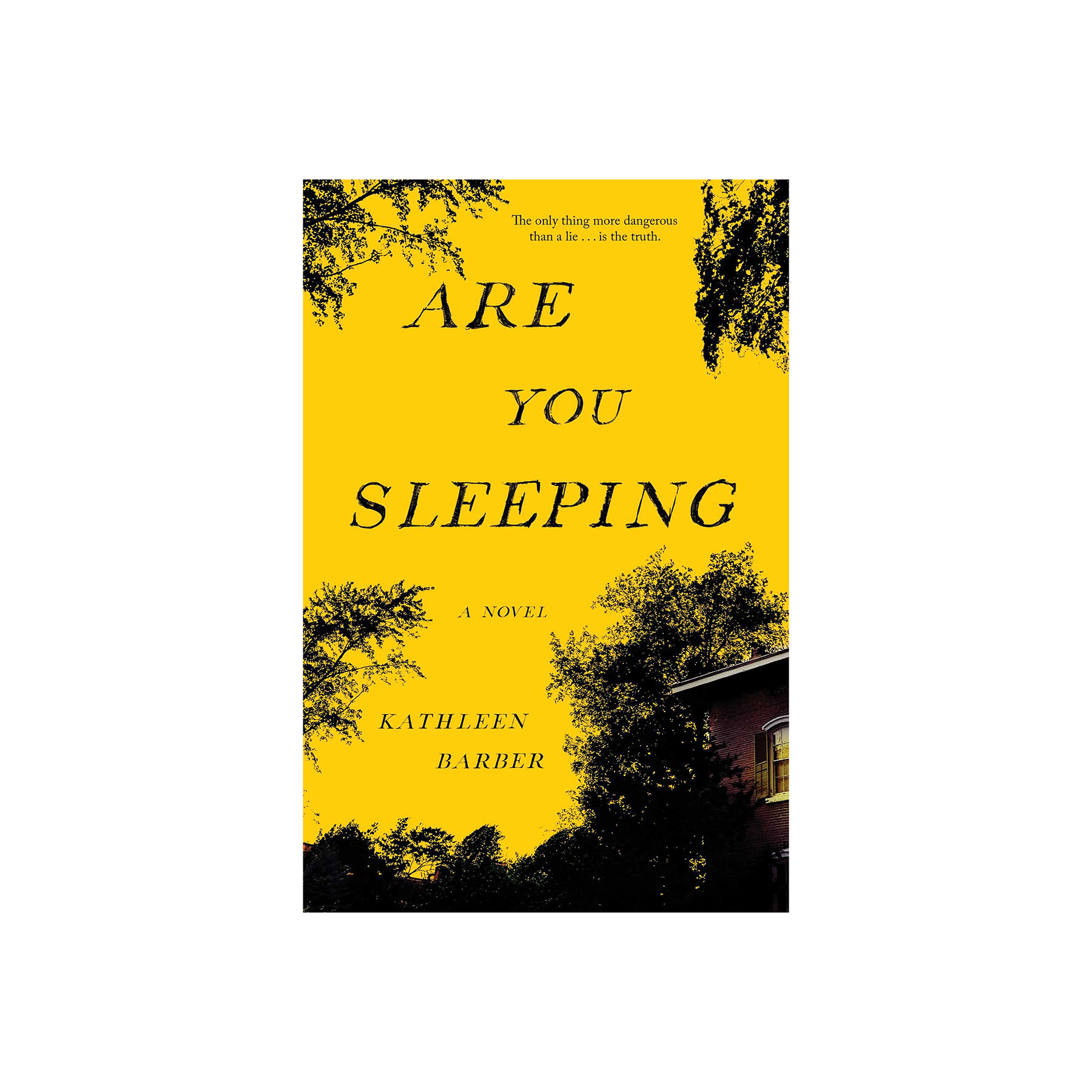 Are You Sleeping?, by Kathleen Barber