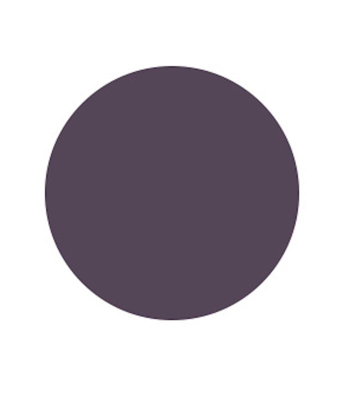 Grappa Paint Color by Benjamin Moore, best bold paint colors