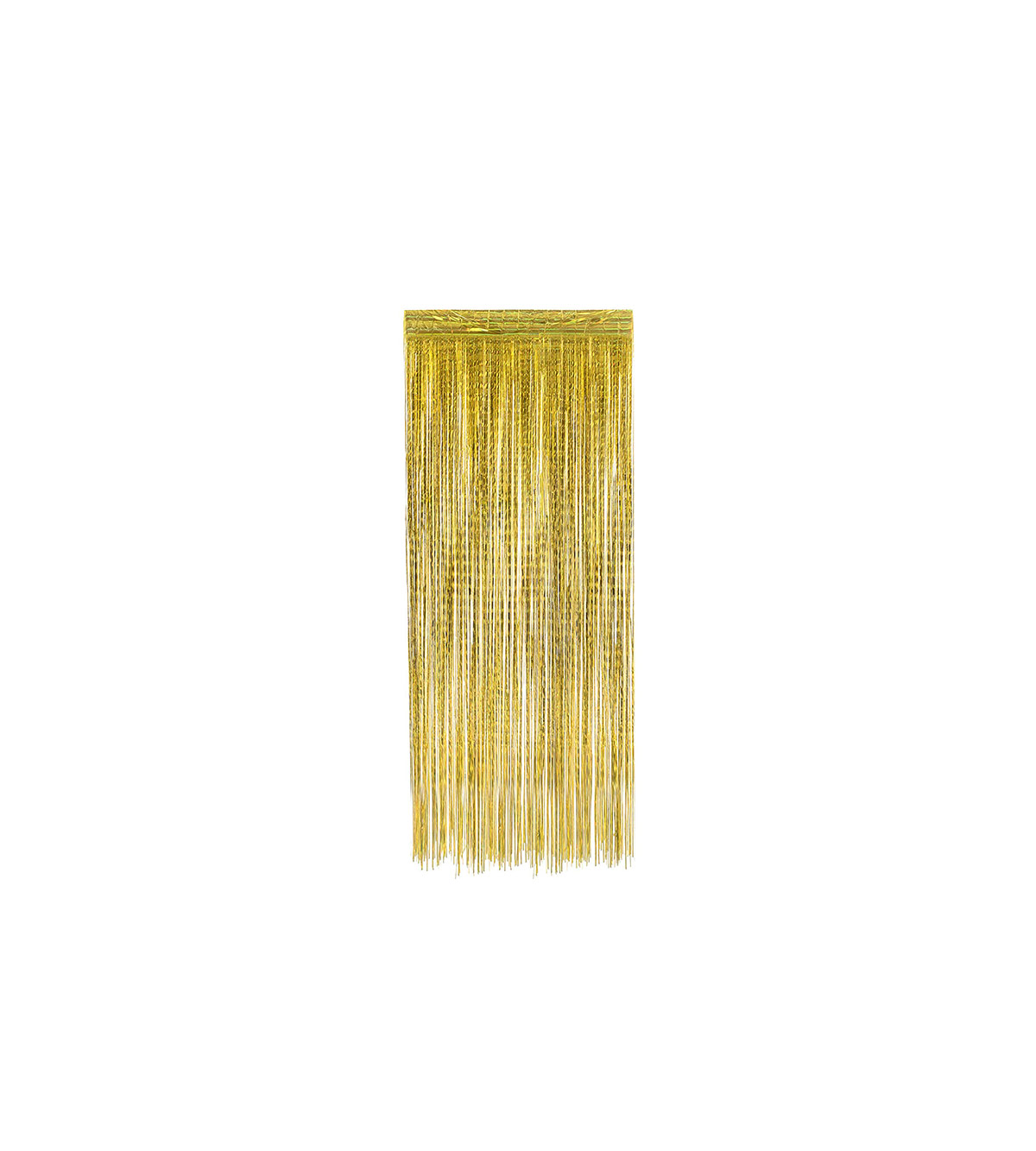 Foil Fringe Curtain Photo Booth Backdrop