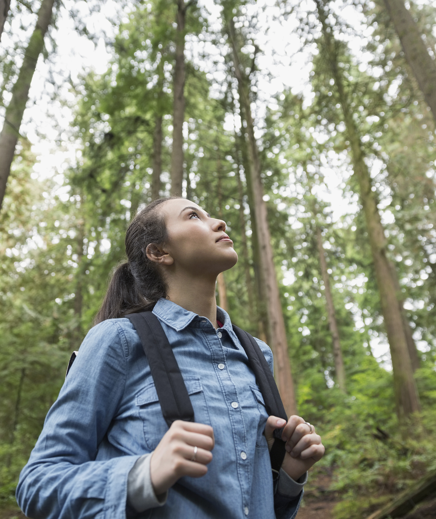 Woman looking up at trees in the forest