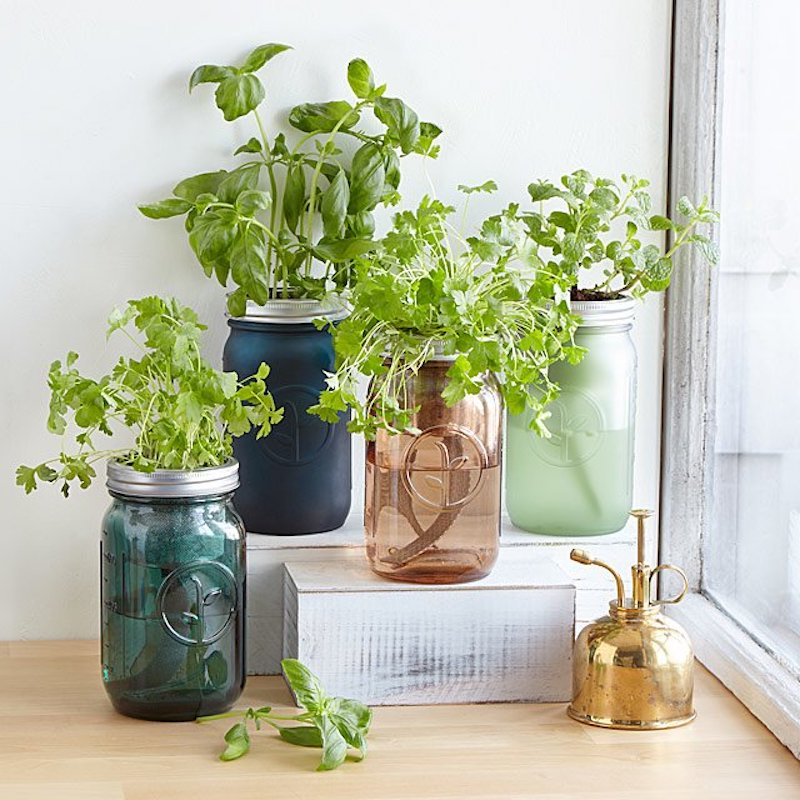 Best Gifts for Person You Don't Know Very Well, herb planter