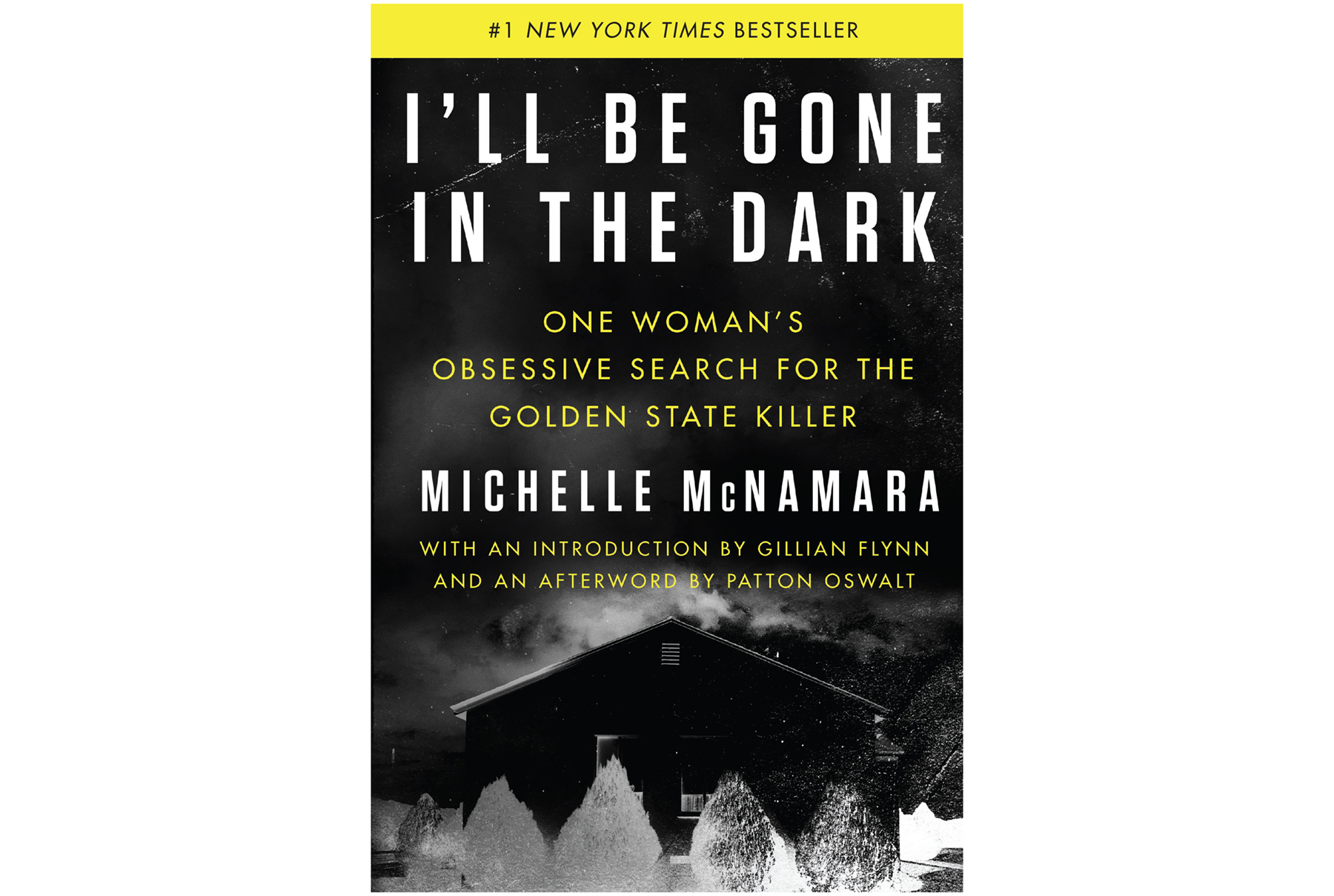I'll Be Gone In The Dark, by Michelle McNamara