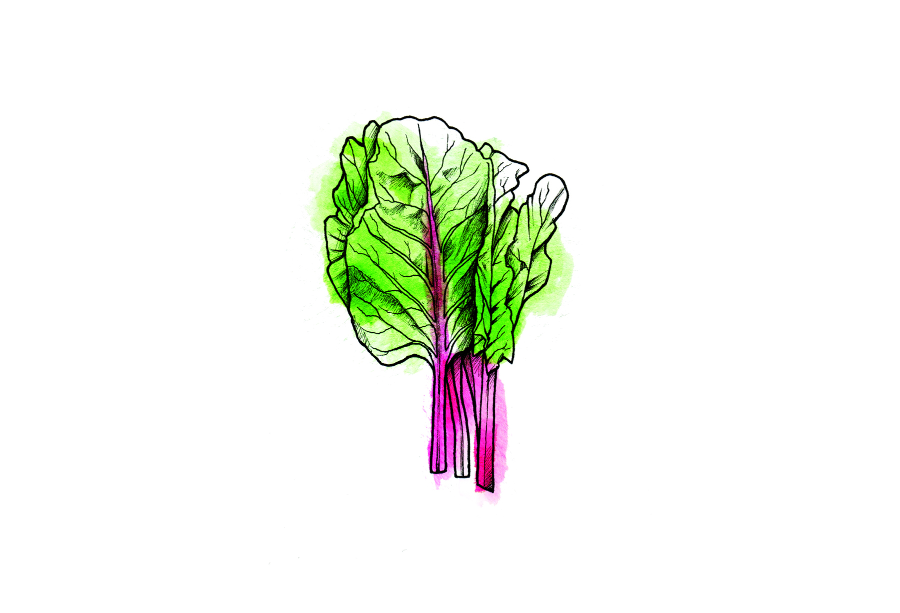 Chard, Kale, or Other Sturdy Greens