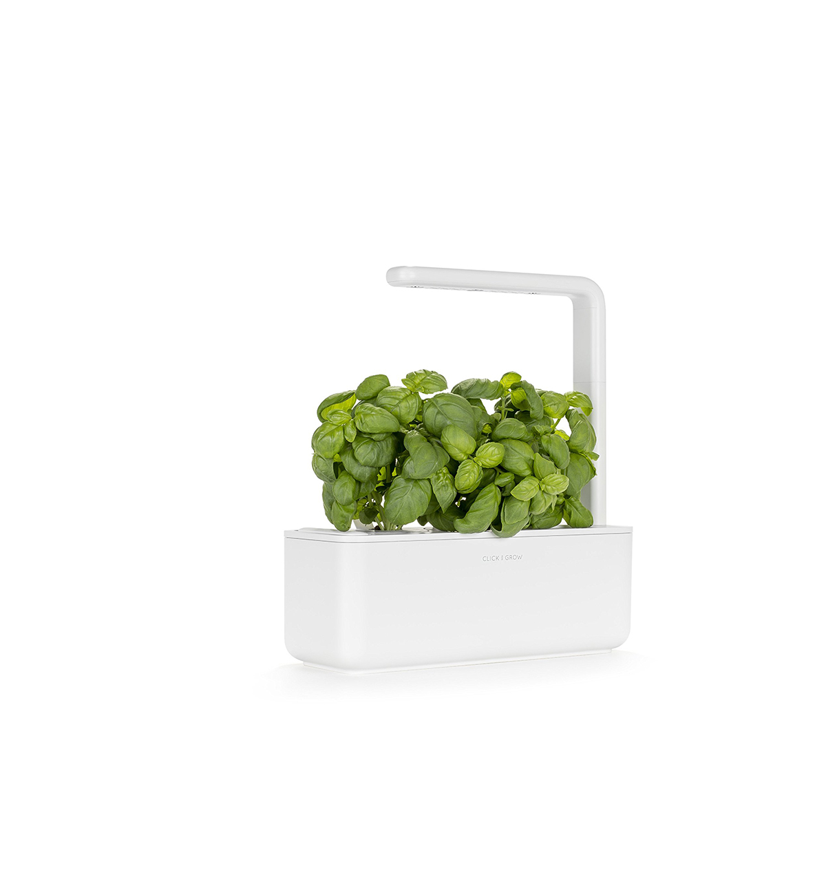 Indoor countertop herb garden