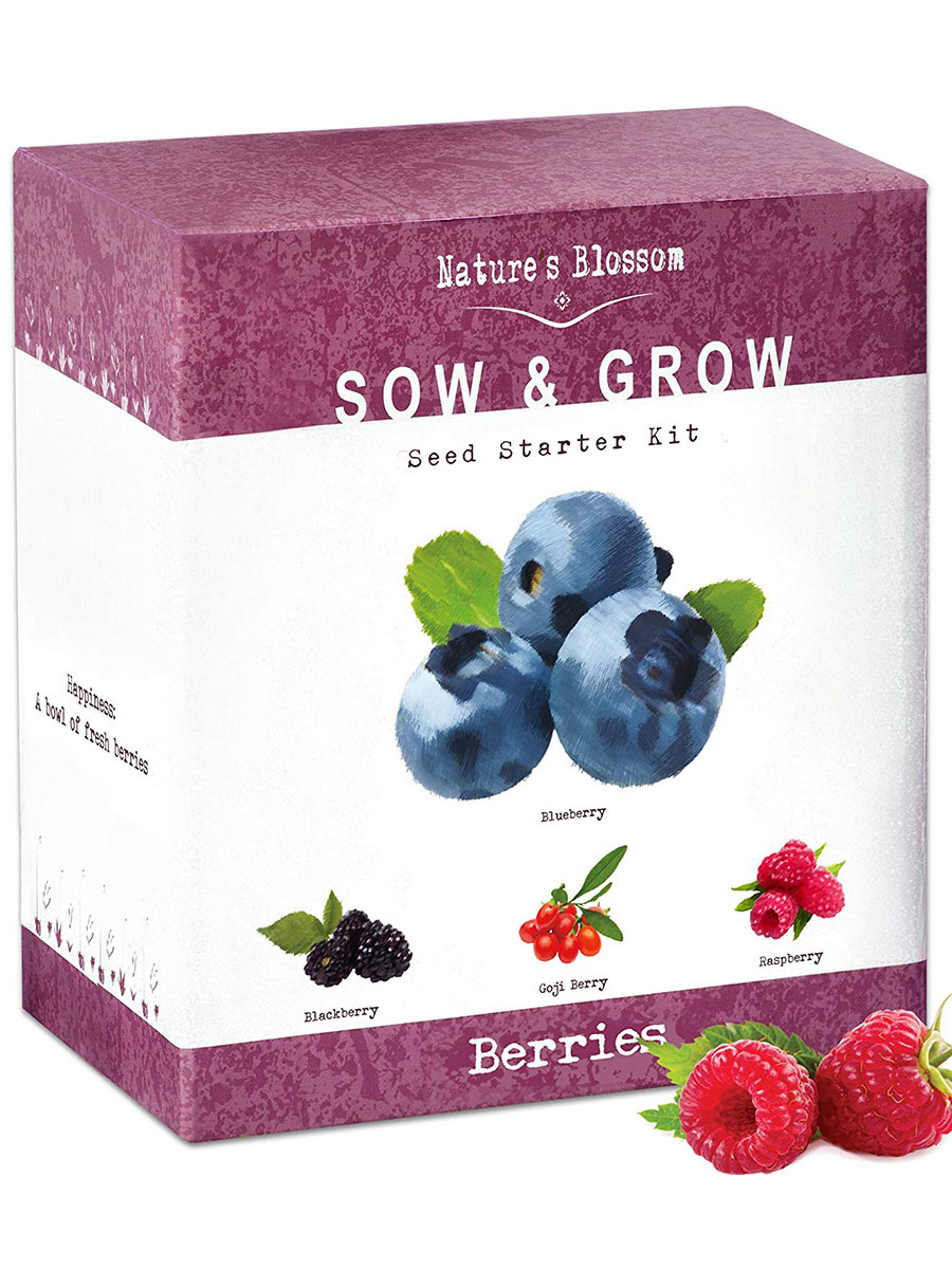 Nature's Blossom Fruit Grow Kit