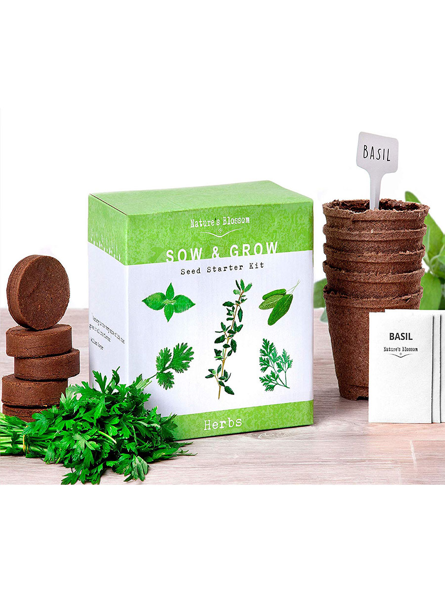 Nature's Blossom Herb Garden Kit