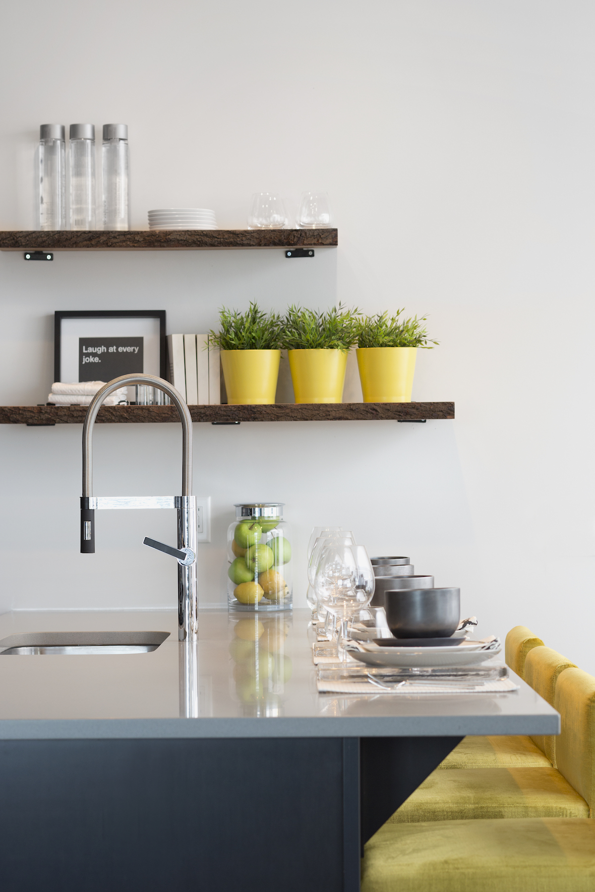 Kitchen with open shelving and plants