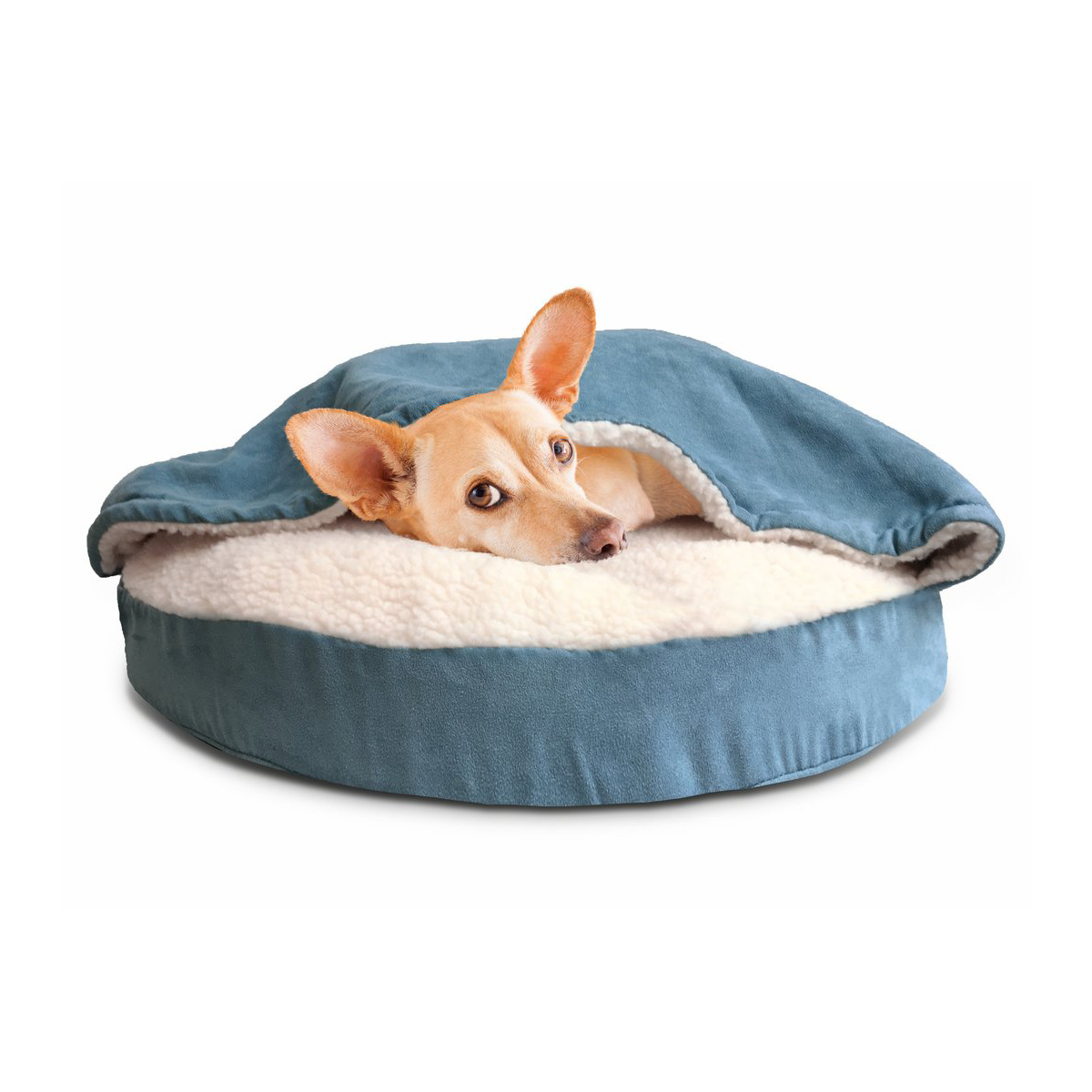 Hooded Dog Bed From Wayfair's New Online Pet Supply Store