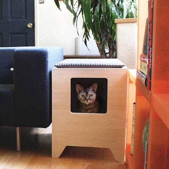 Enclosed Litter Box From Wayfair's New Online Pet Supply Store