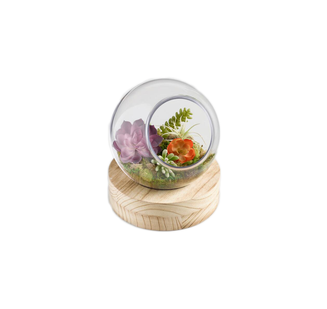 The Side-Table Accessory: Large Glass Ball Terrarium With Wood Stand