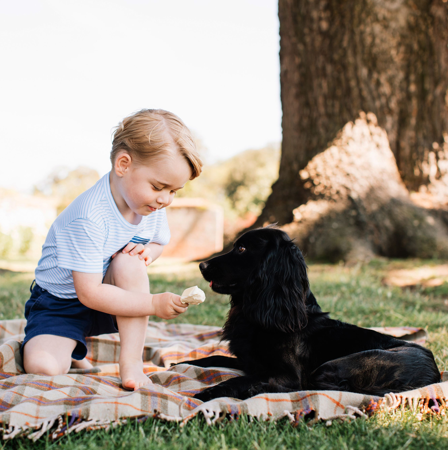 Prince George feeding dog ice cream