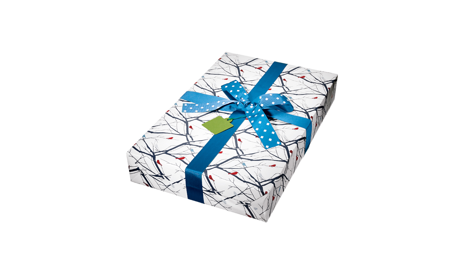 Gift with bird wrapping paper and blue bow