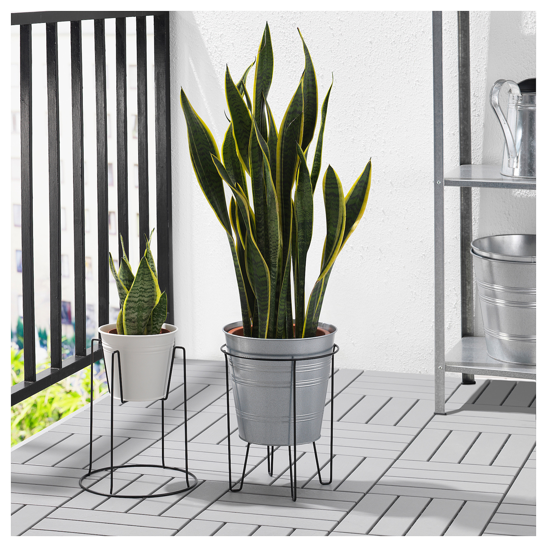 Sommar plant stand on patio outside