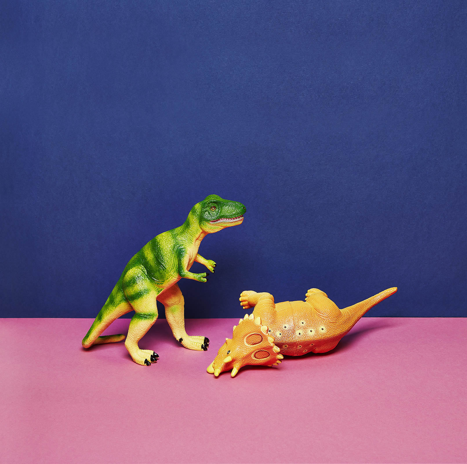 Fighting toy dinosaurs