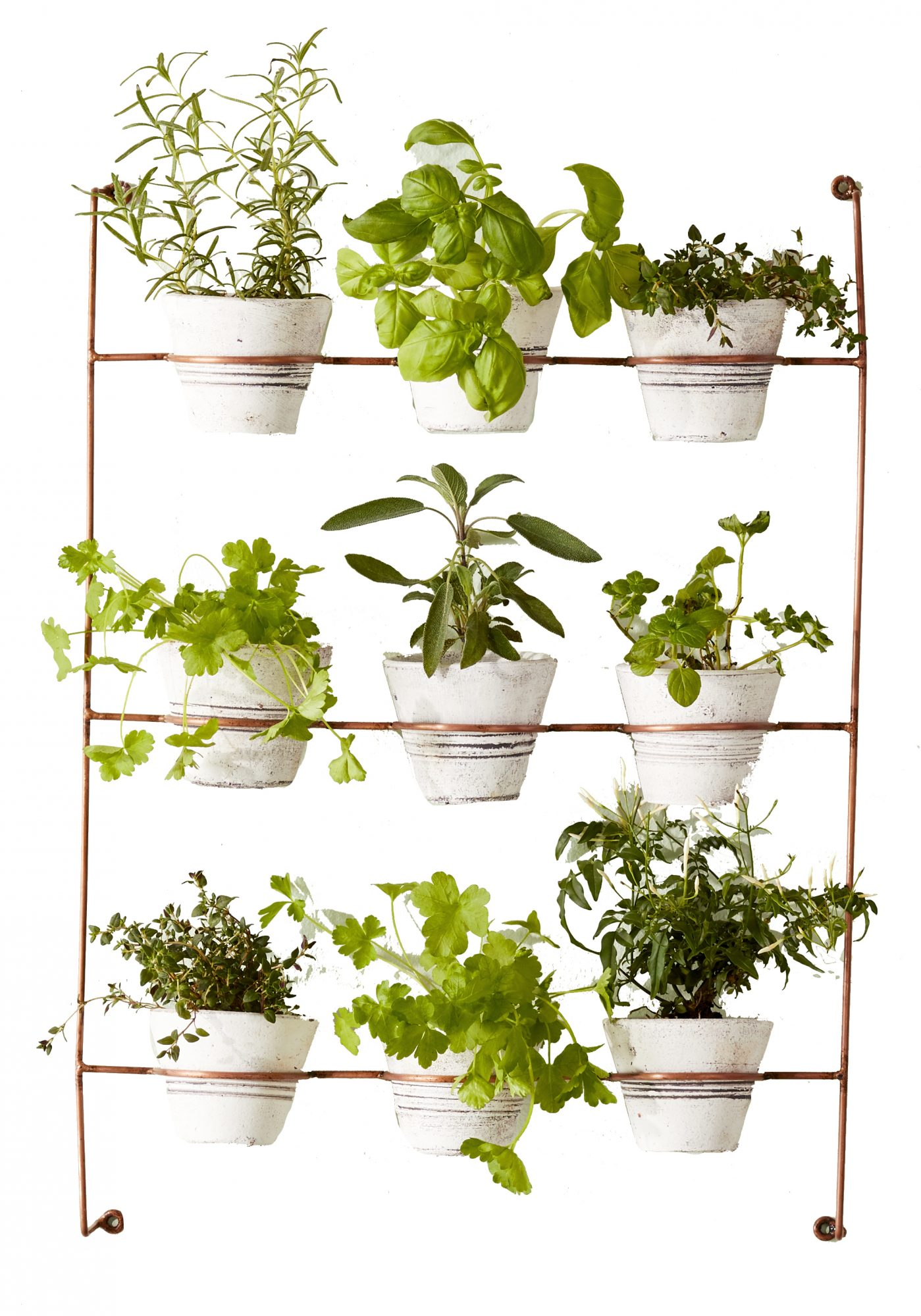 Wolter Wash Clay Wall Planter