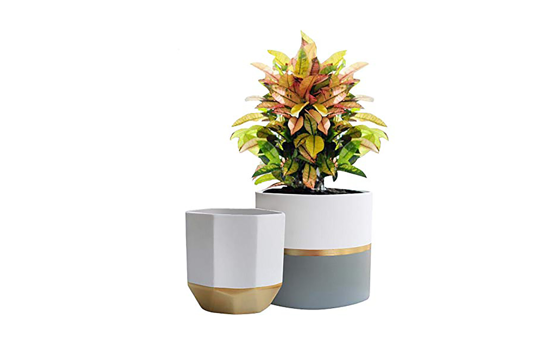 White Ceramic Flower Pots with Gold and Grey on Amazon