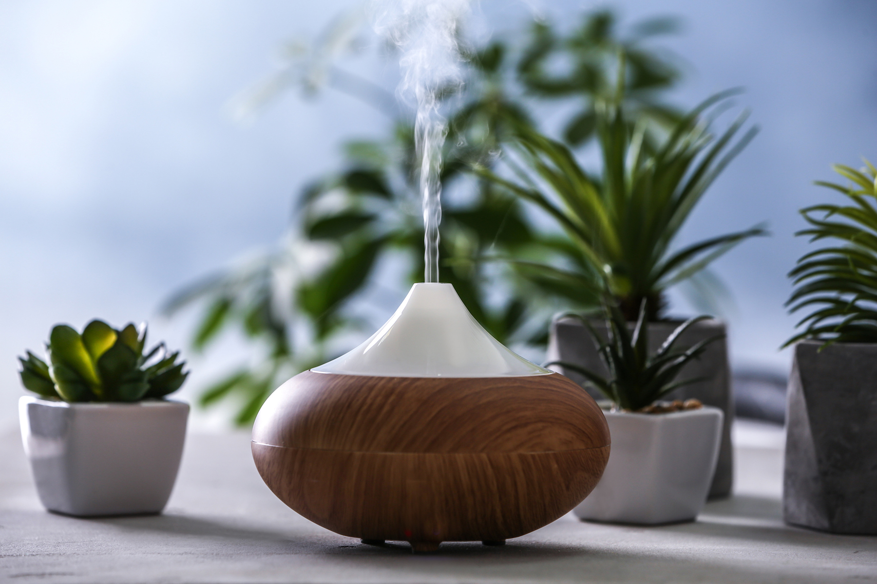 wooden humidifier and plants