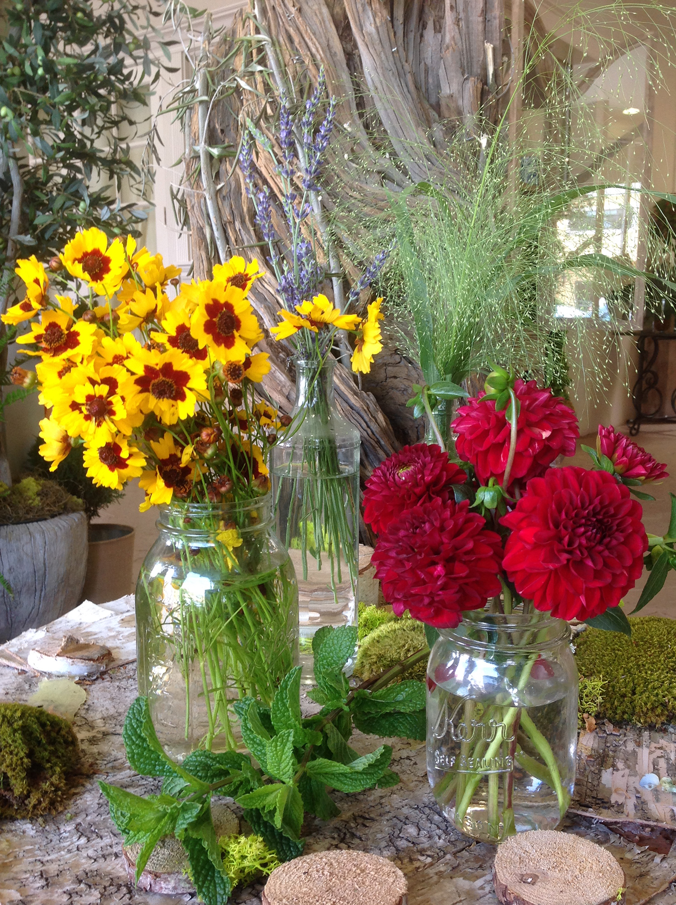 Mix of floral and herb arrangements