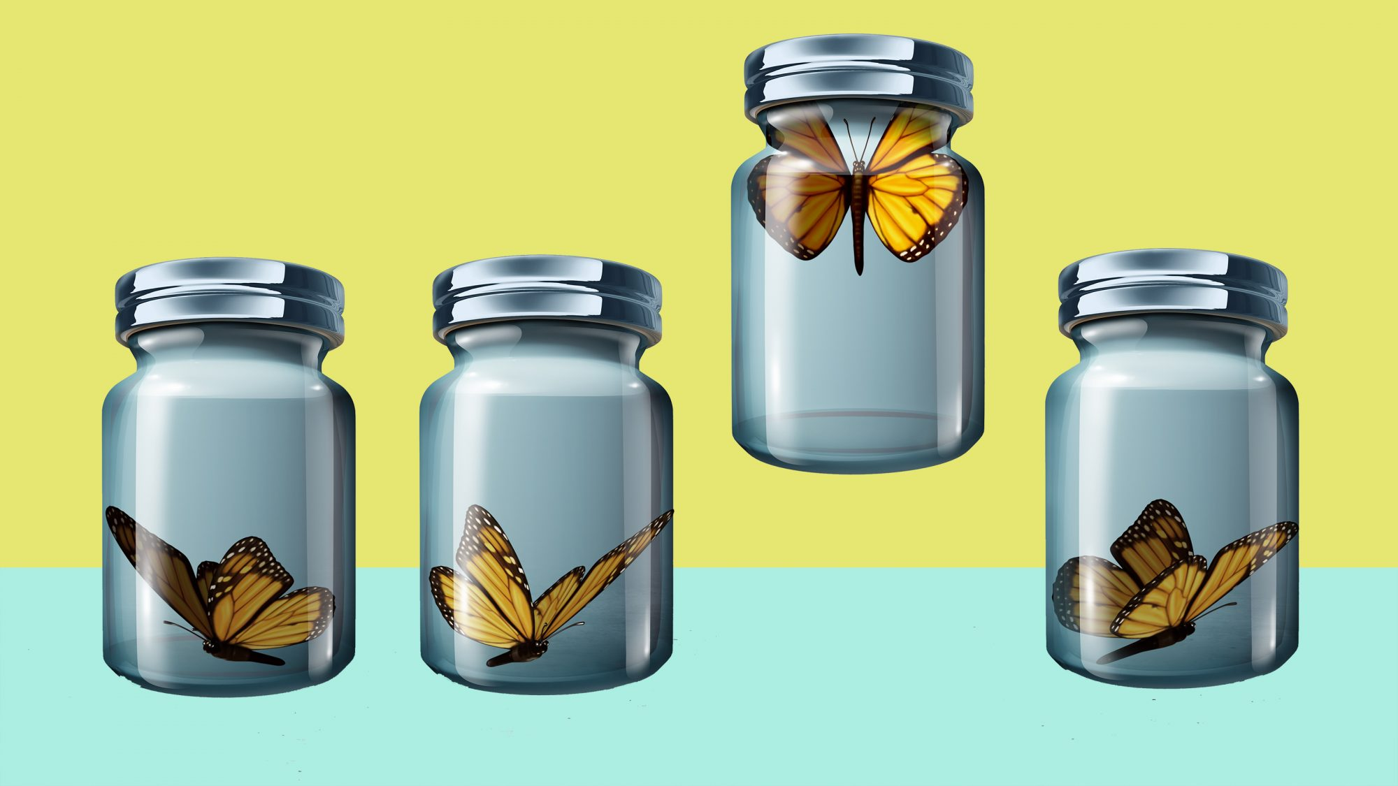 Cabin fever - meaning, definition, and symptoms (butterflies in jars)