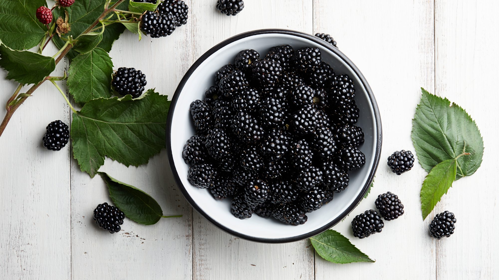 high fiber foods: bowl of blackberries