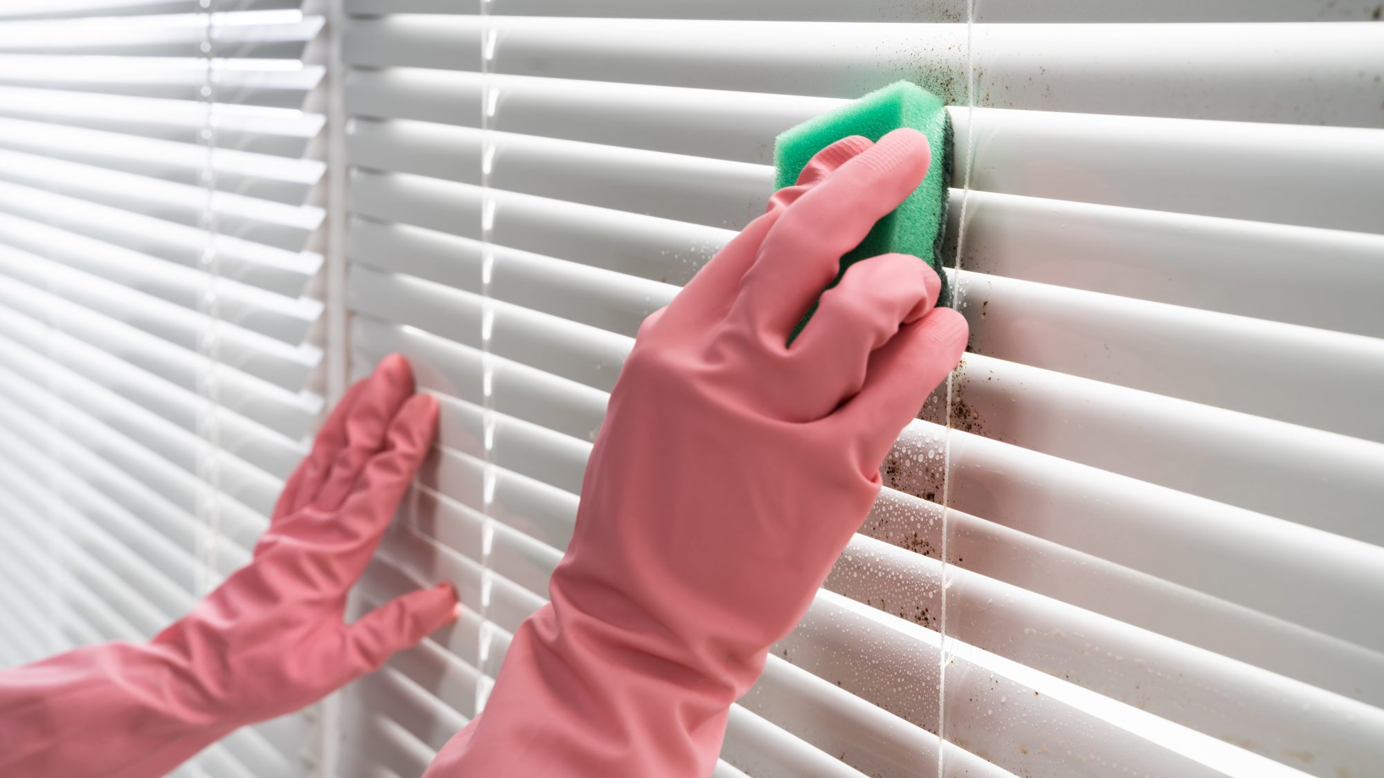 Person cleaning blinds