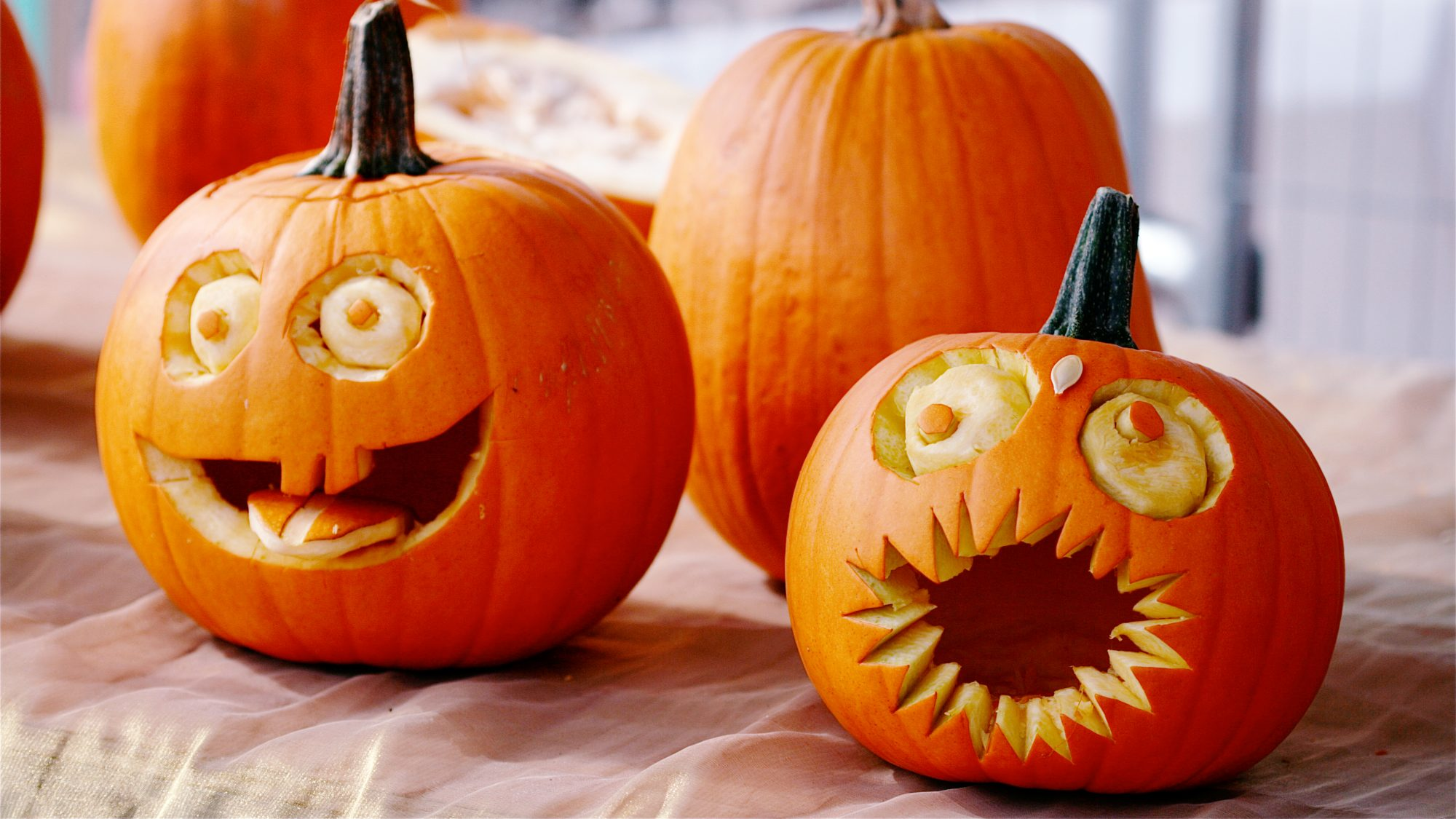 how to make pumpkins last longer - carved pumpkins
