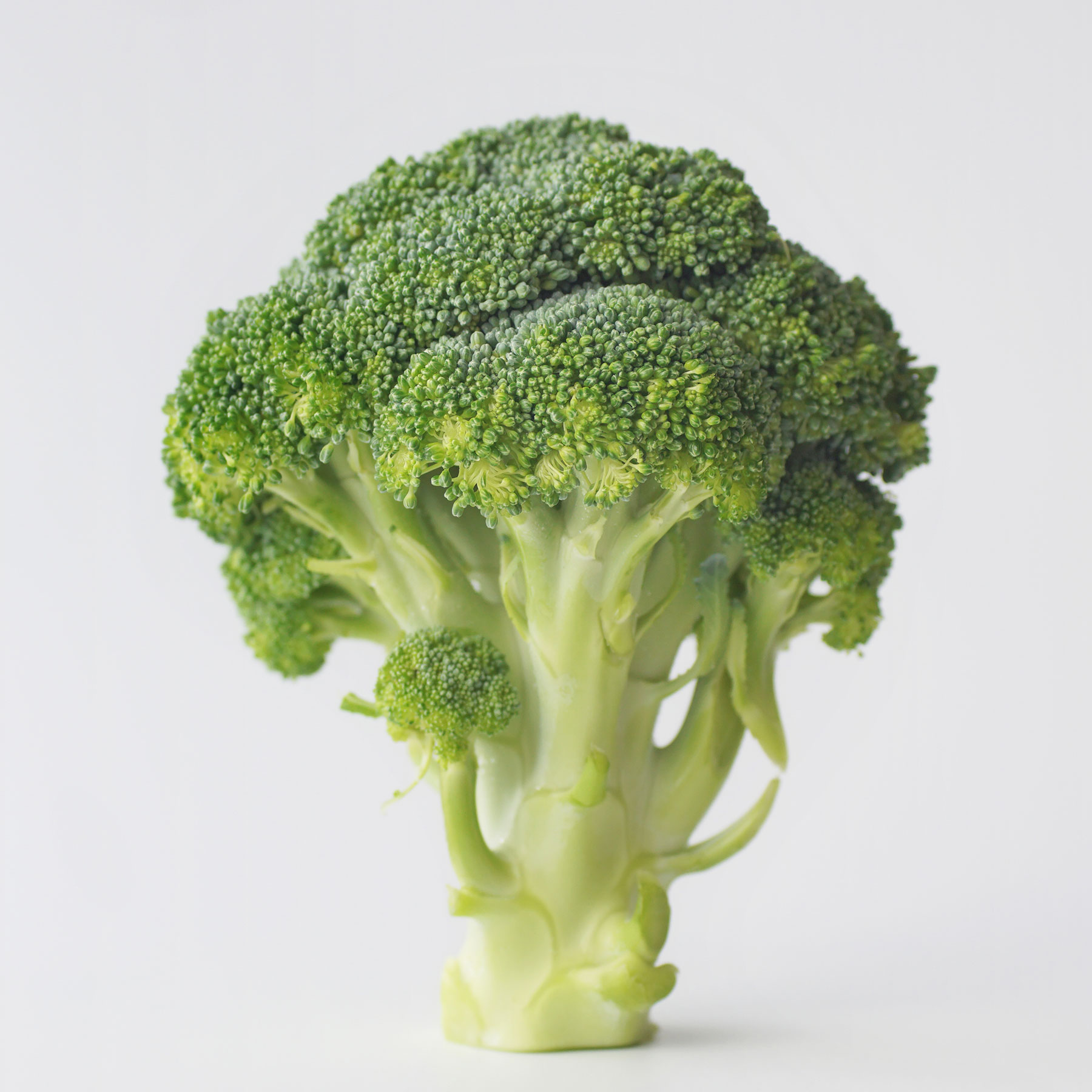 Superfoods to Know About: Broccoli