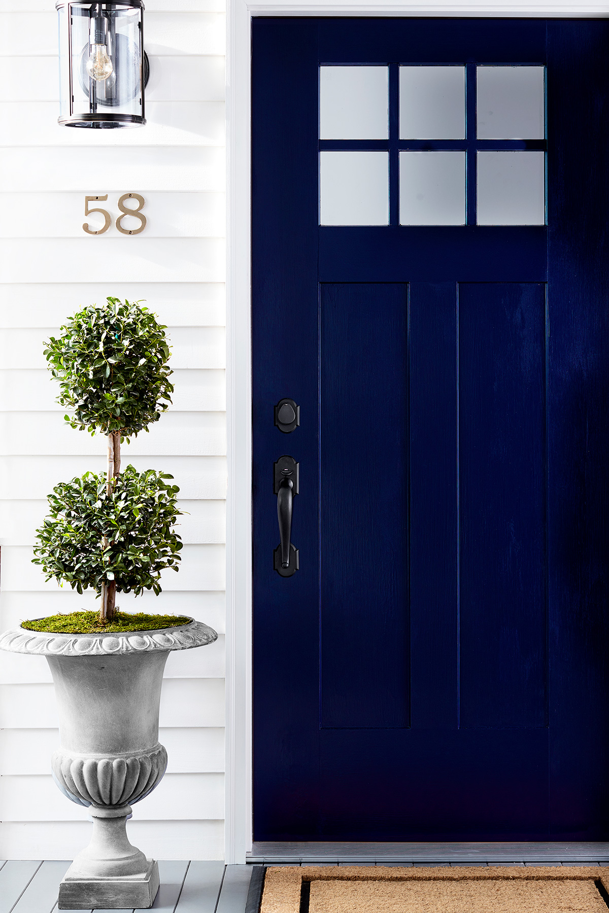 Exterior House Painting Guide: Navy Front Door