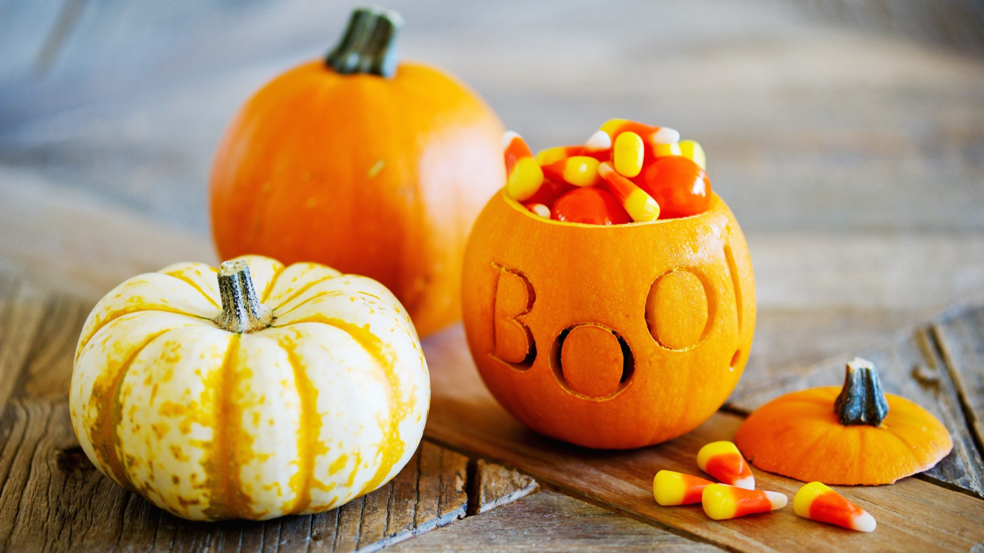 Halloween fun facts - facts and trivia about Halloween, candy corn, and trick-or-treating (pumpkin with candy corn)