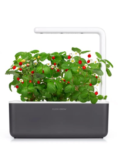 gifts for couples, easy indoor herb garden with grow light