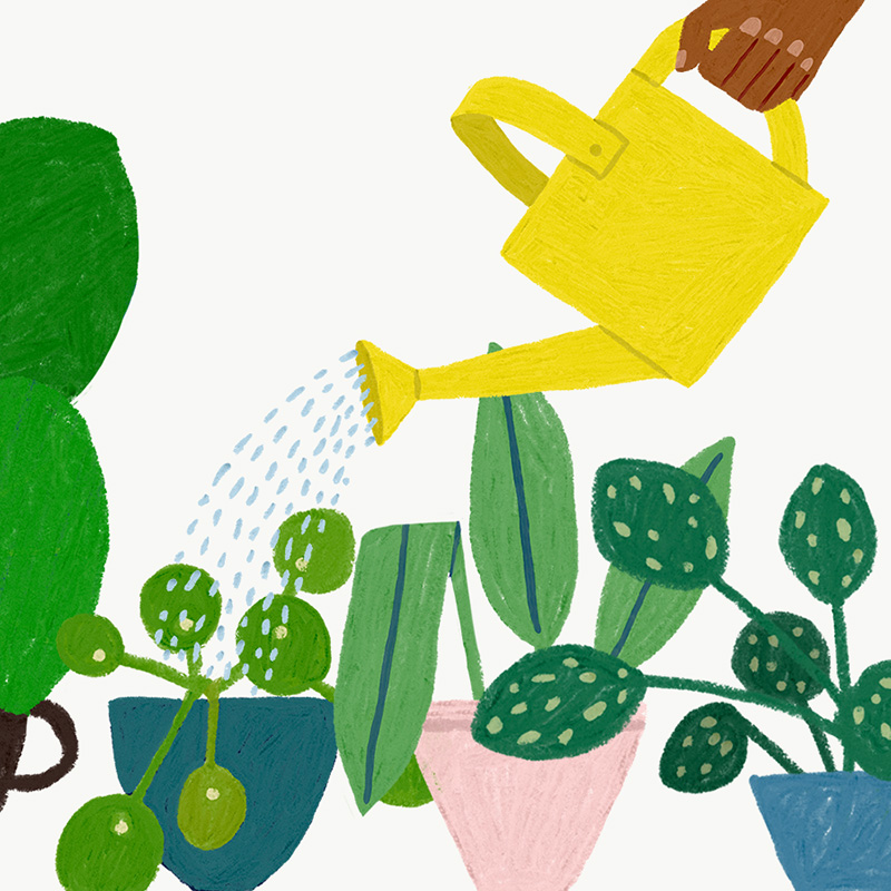 Positive Parenting Tips: Watering plants