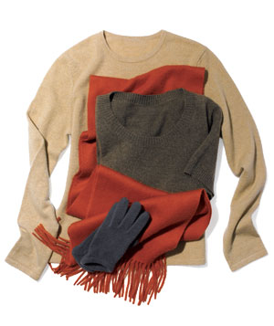 Brown Cashmere sweaters and accessories