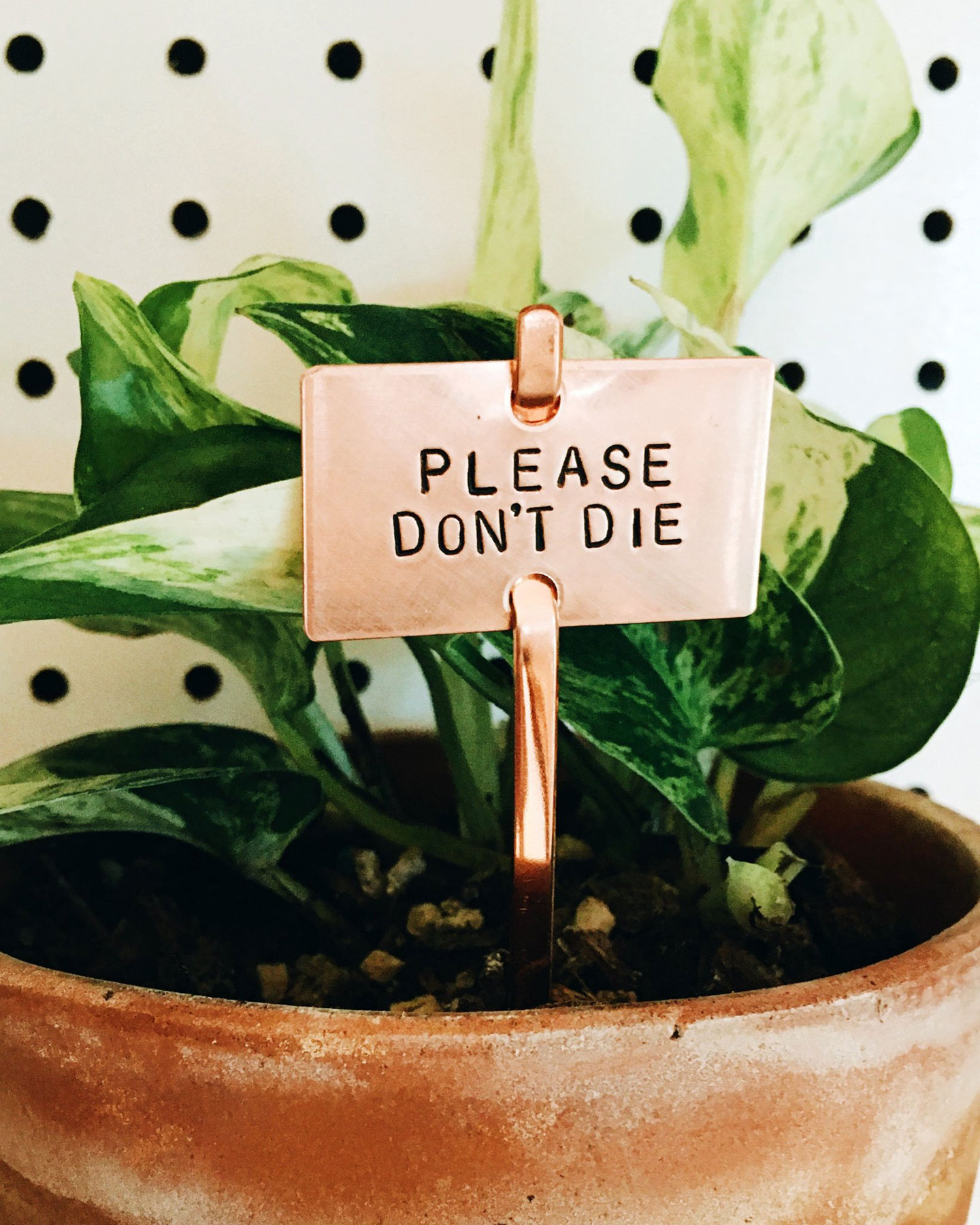 Gifts for plant lovers - Simplestamp Jewelry Plant Marker