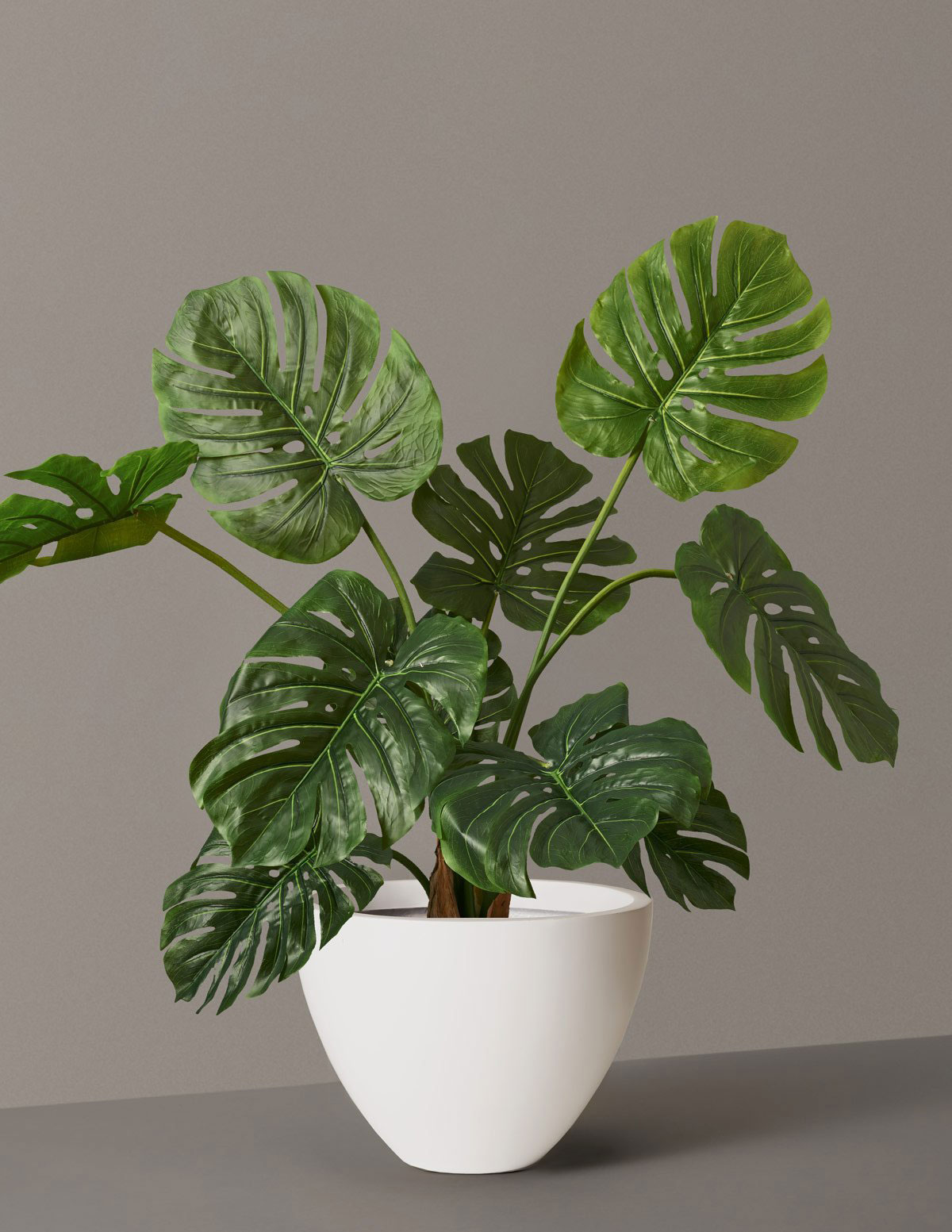 Gifts for plant lovers - The Sill Faux Monstera