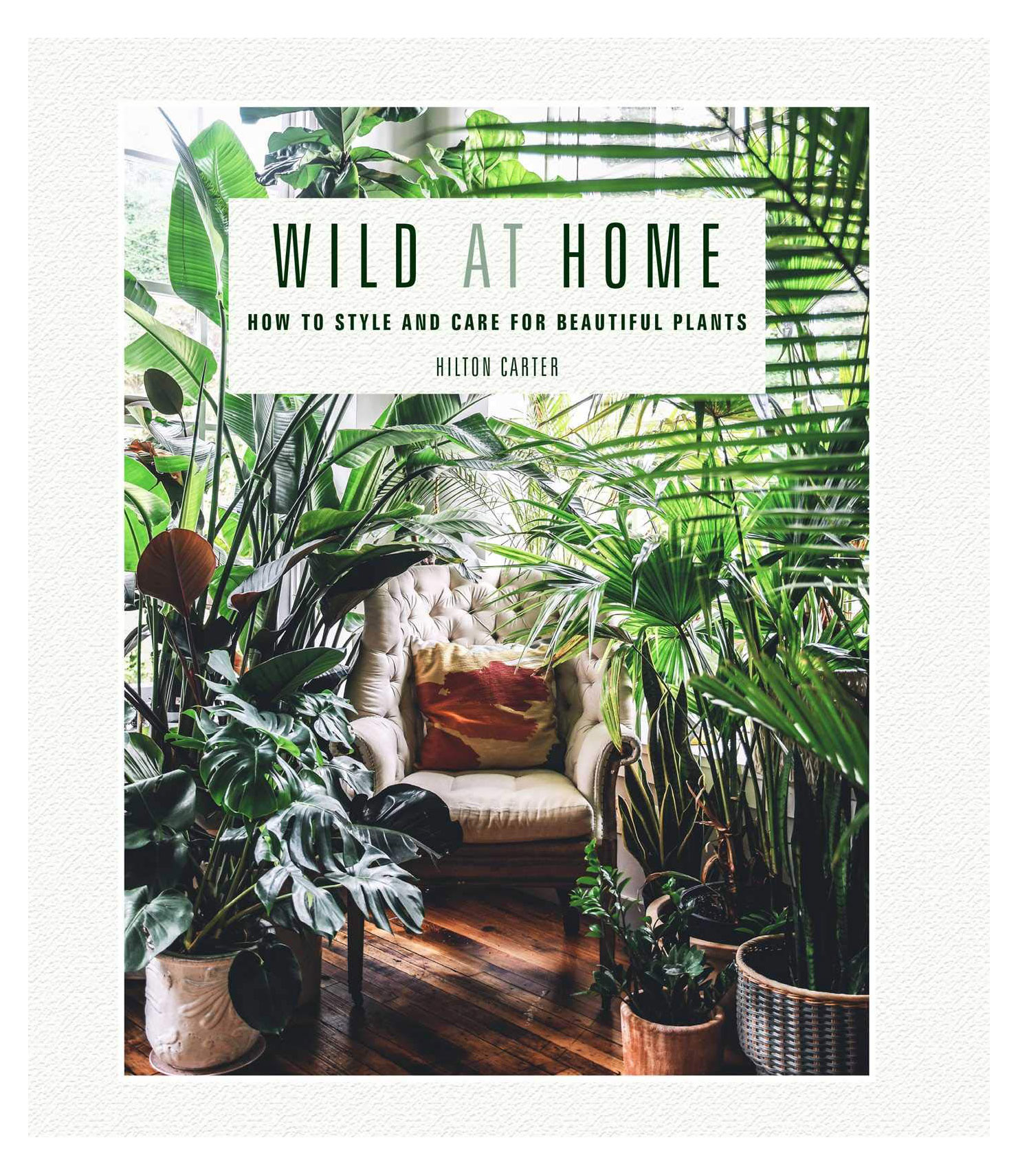 Gifts for plant lovers - Wild at Home: How to Style and Care for Beautiful Plants by Hilton Carter