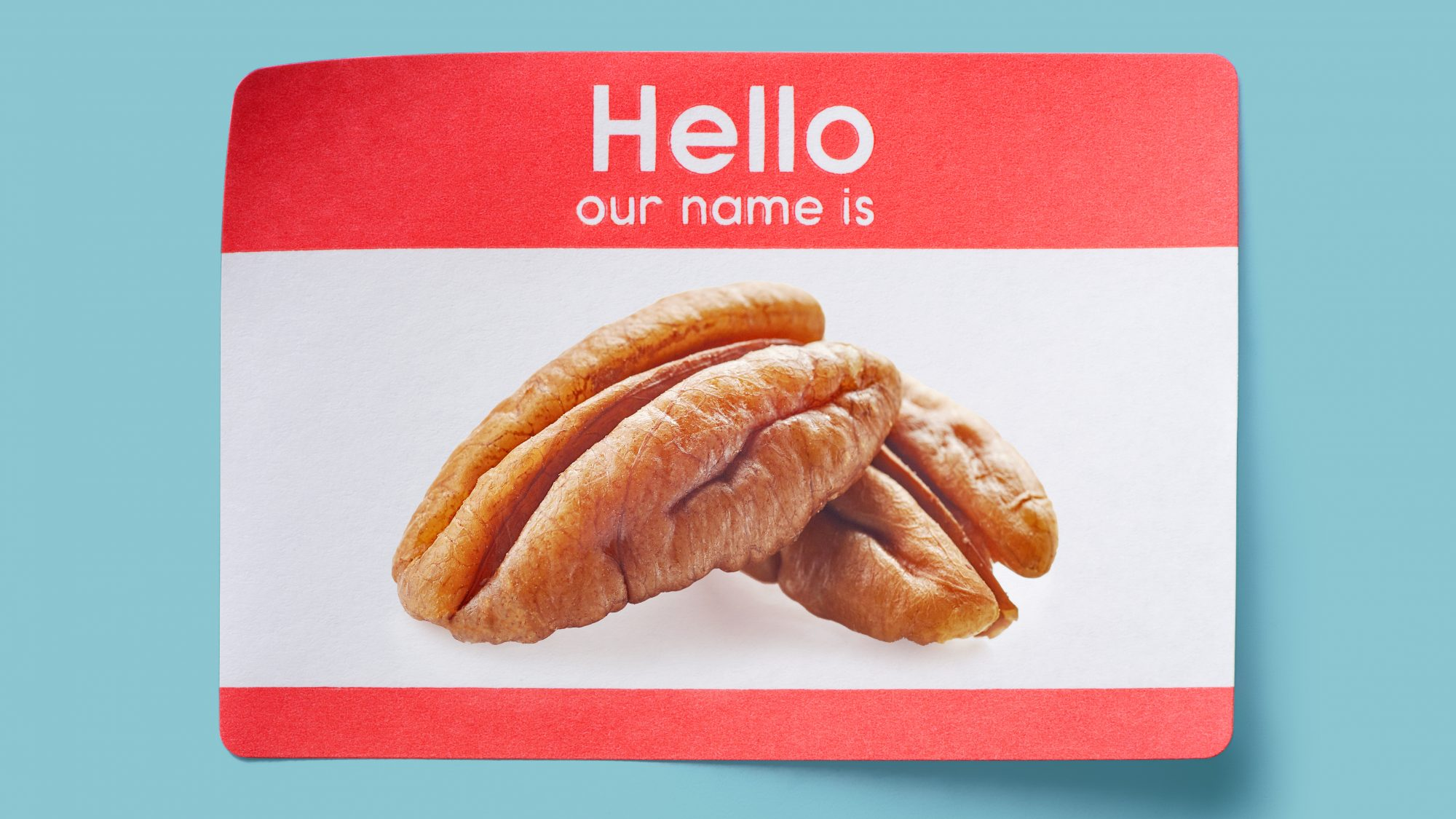 pecan-pronunciation: Hello Our Name Is: Pecan