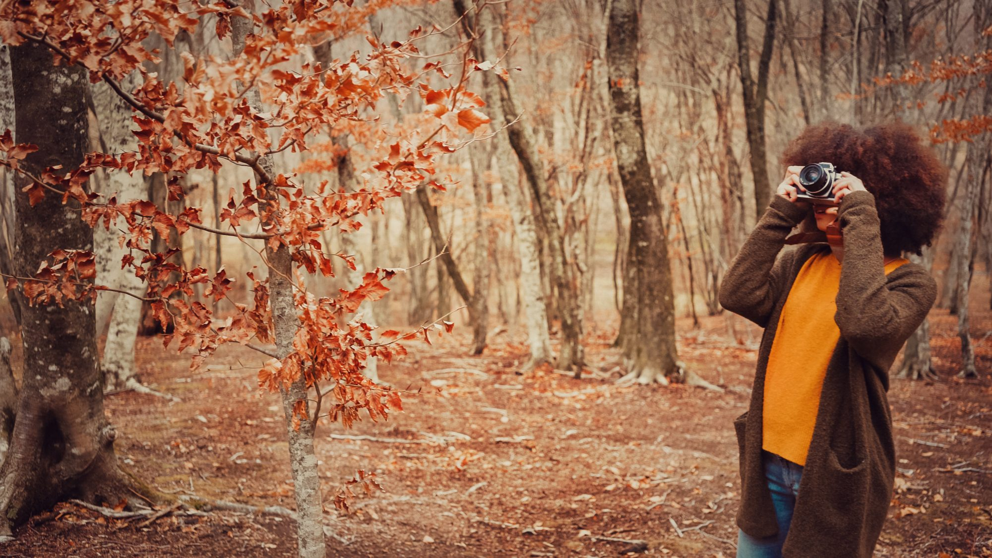 fun-things-to-do-november: woman taking pictures of fall foliage