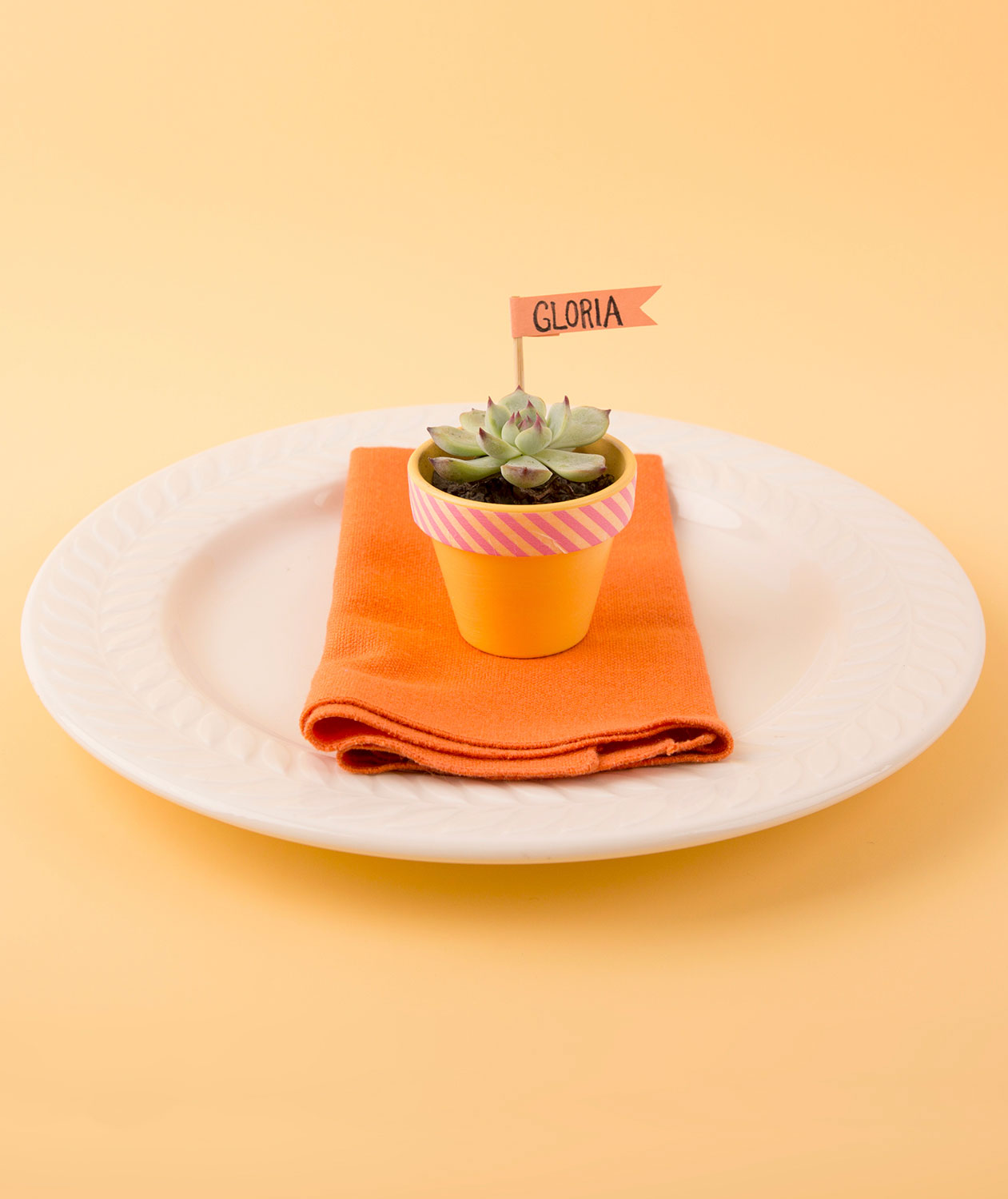 Thanksgiving crafts, ideas - Potted Succulent Place Card Holder