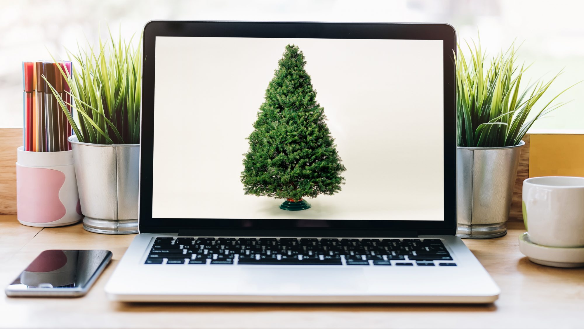 Where to buy real Christmas trees online: laptop
