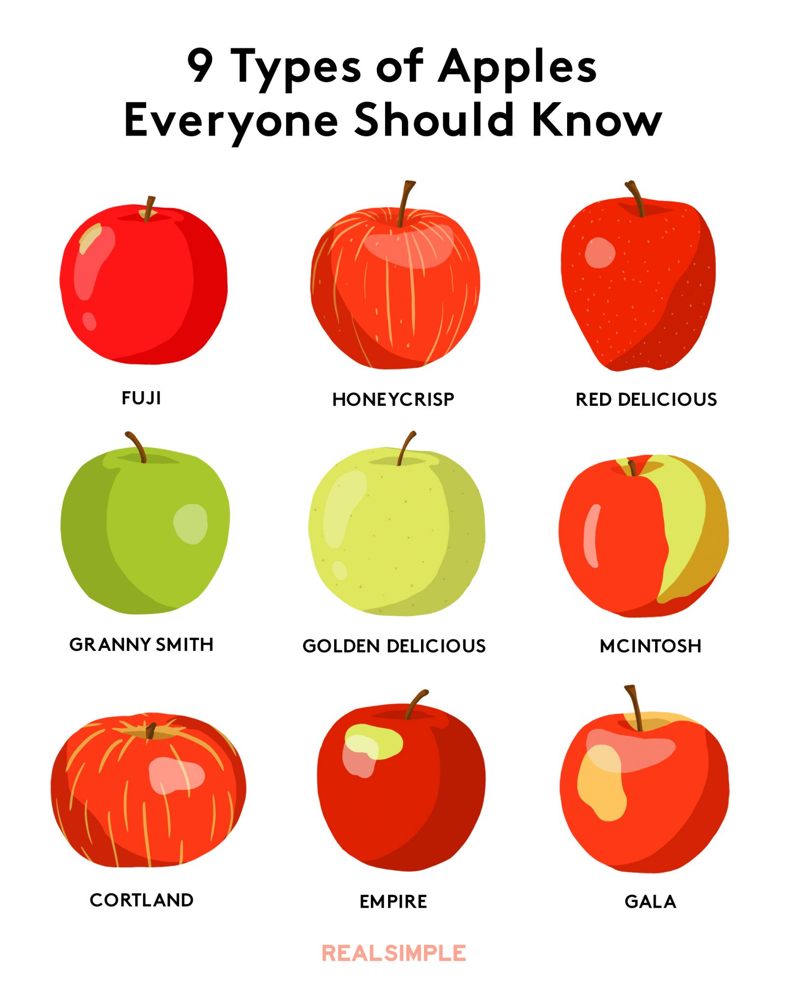 Types of apples - different kinds of apples pictures, names, chart