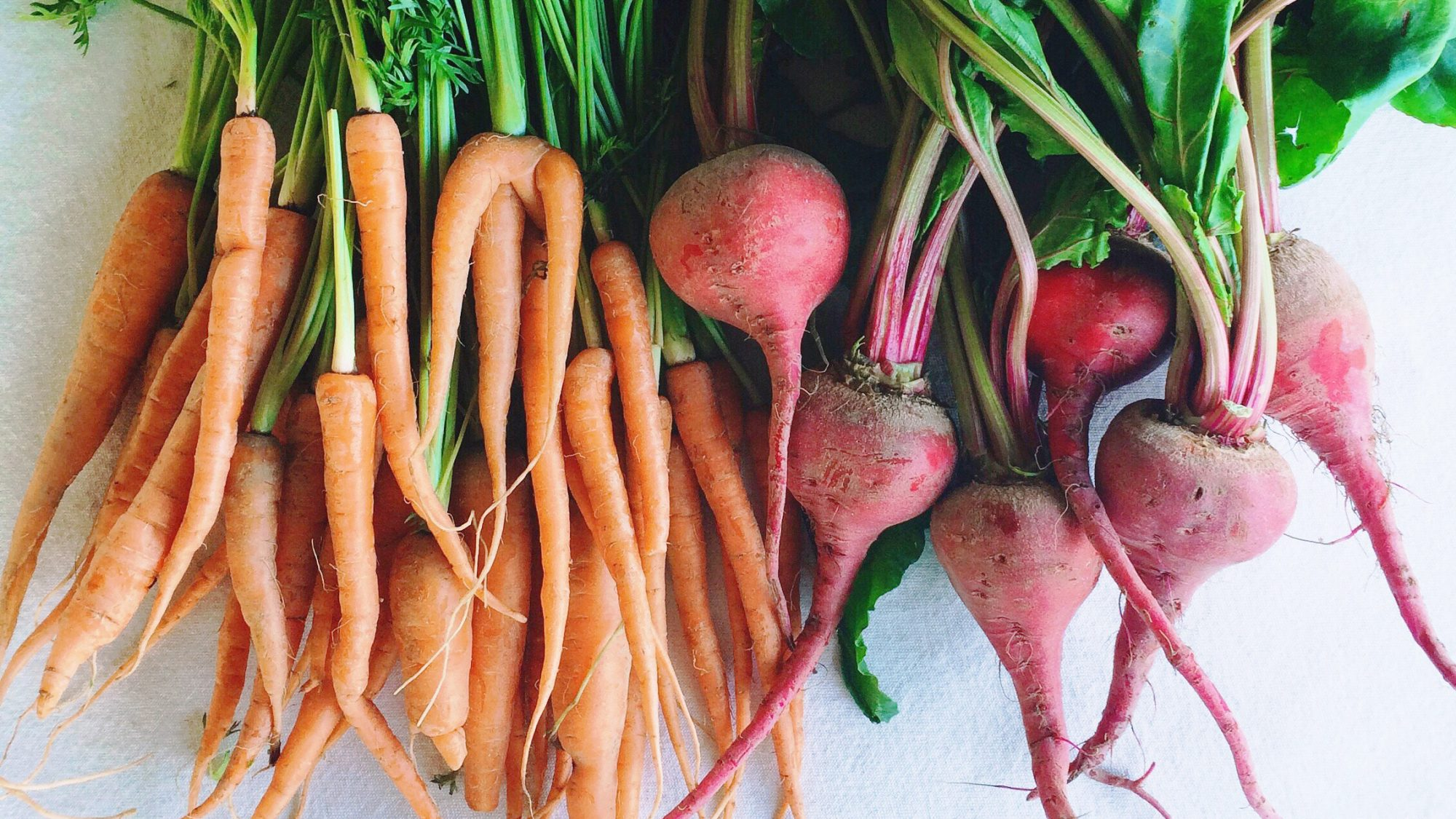 best-winter-produce: carrots and radishes