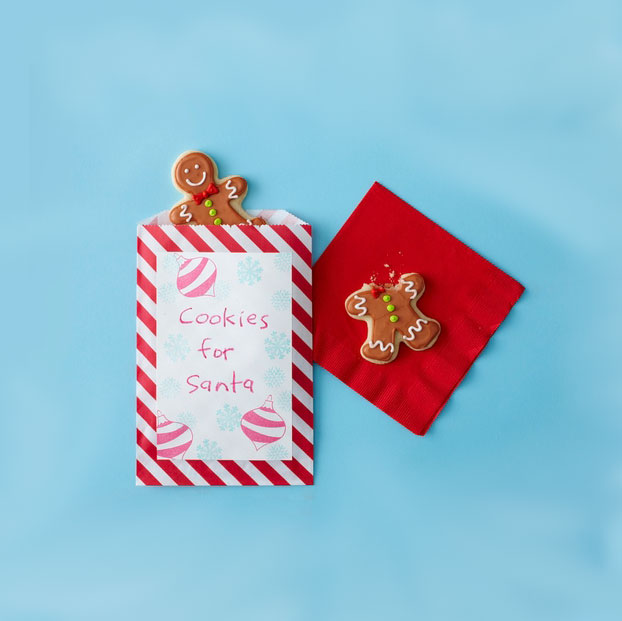 Christmas crafts ideas - Goody Bag