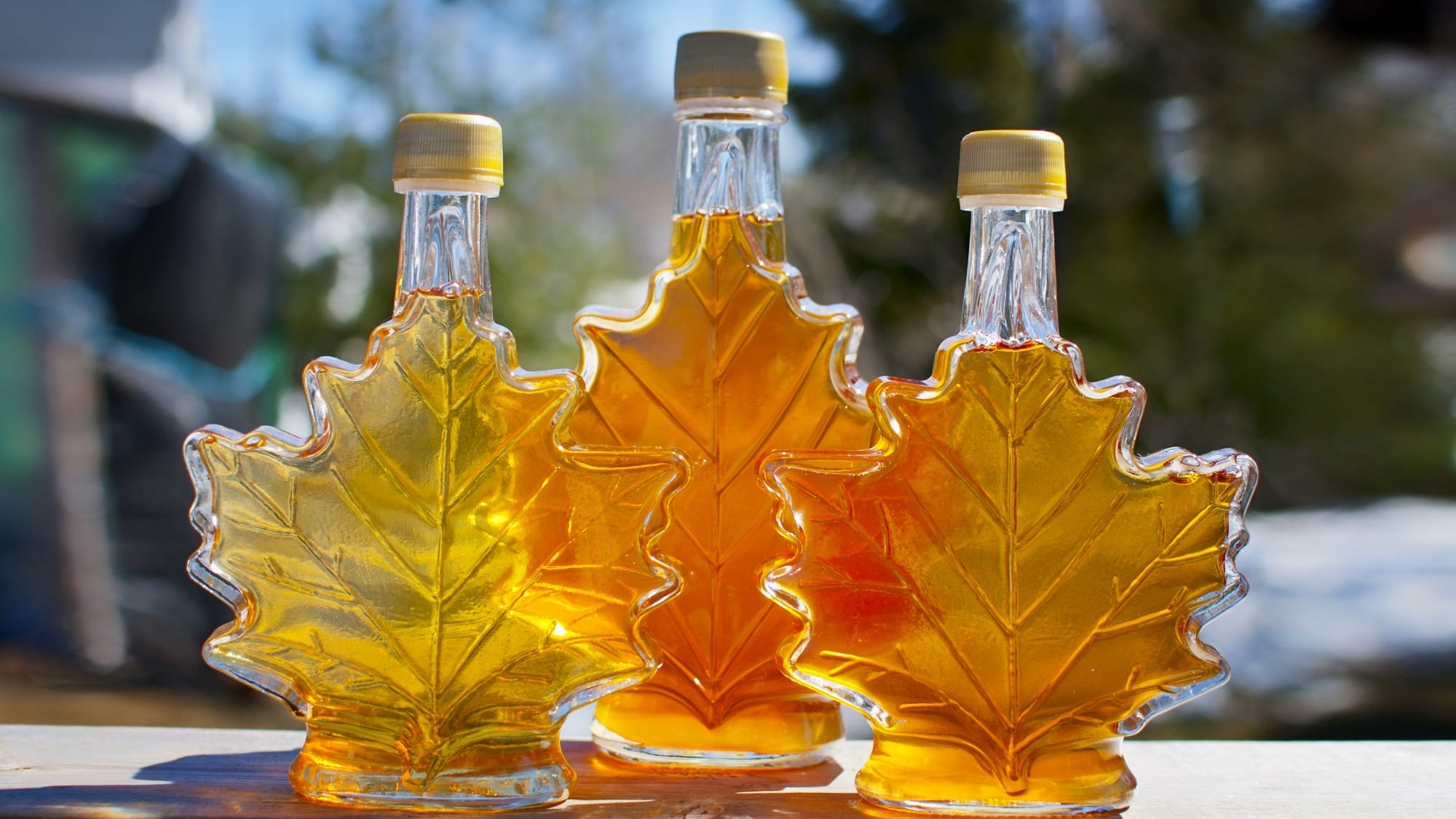 How-to-store-maple-syrup