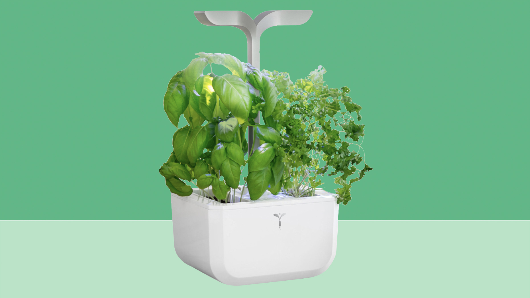 Best Christmas gifts 2020 - veritable smart planter large on green background tout