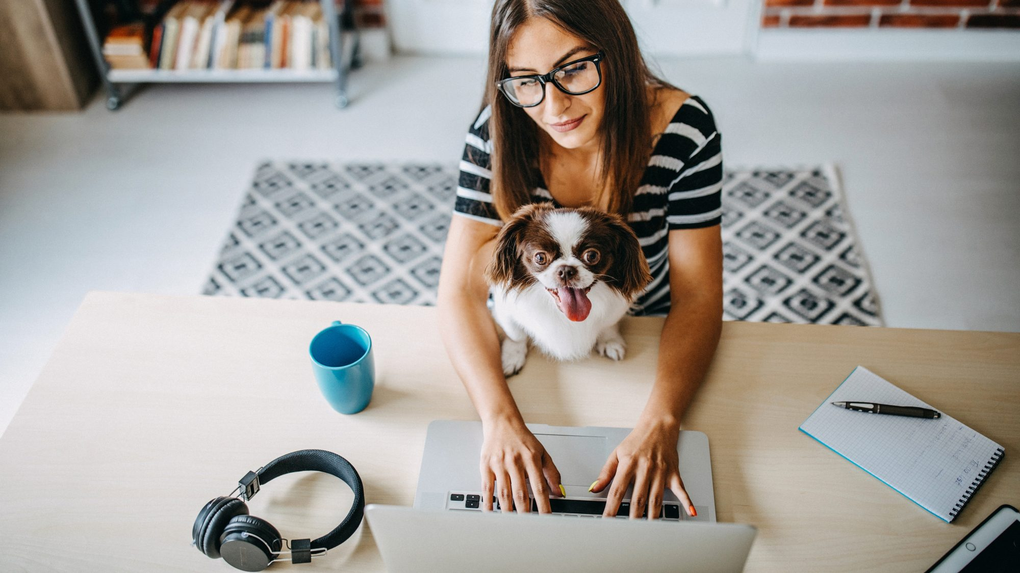 Working from home email, template, tips - how to ask to work from home post-pandemic (worker with dog)