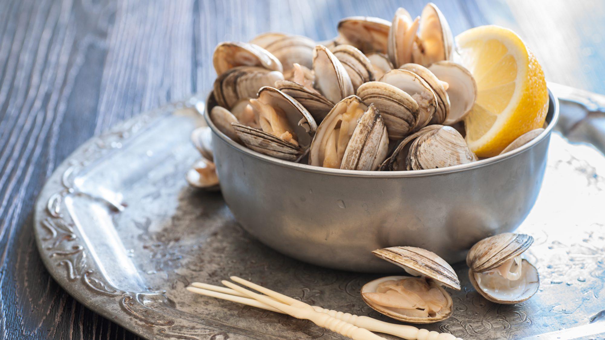 Types of clams - guide to different clam varieties