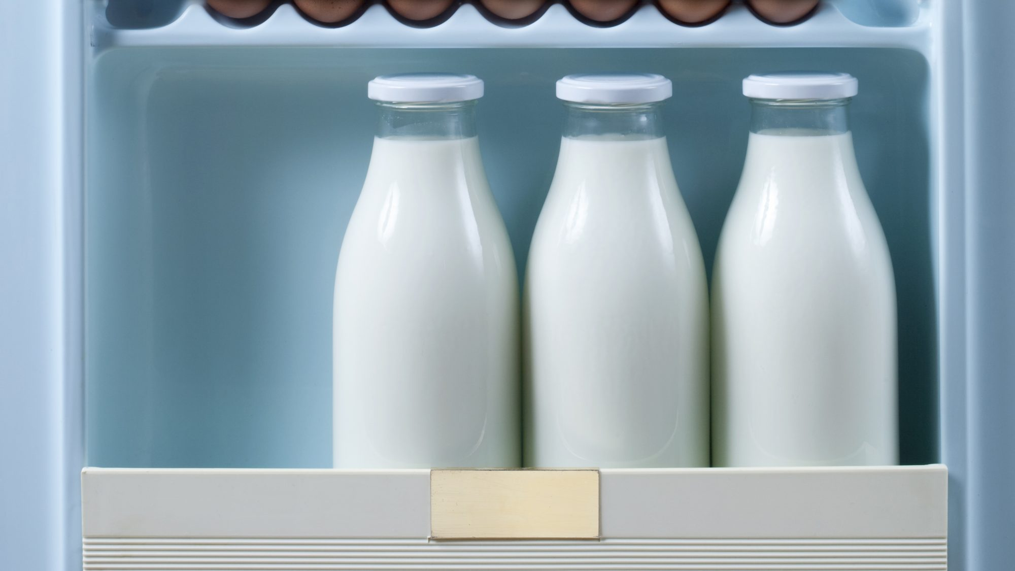how-to-store-milk in the refrigerator